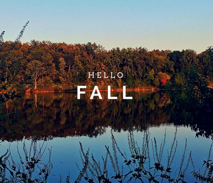 fall, goals
